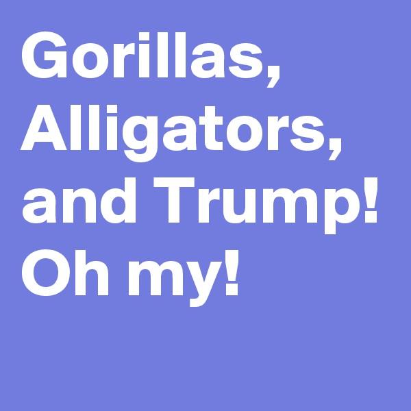 Gorillas, Alligators, and Trump! Oh my!