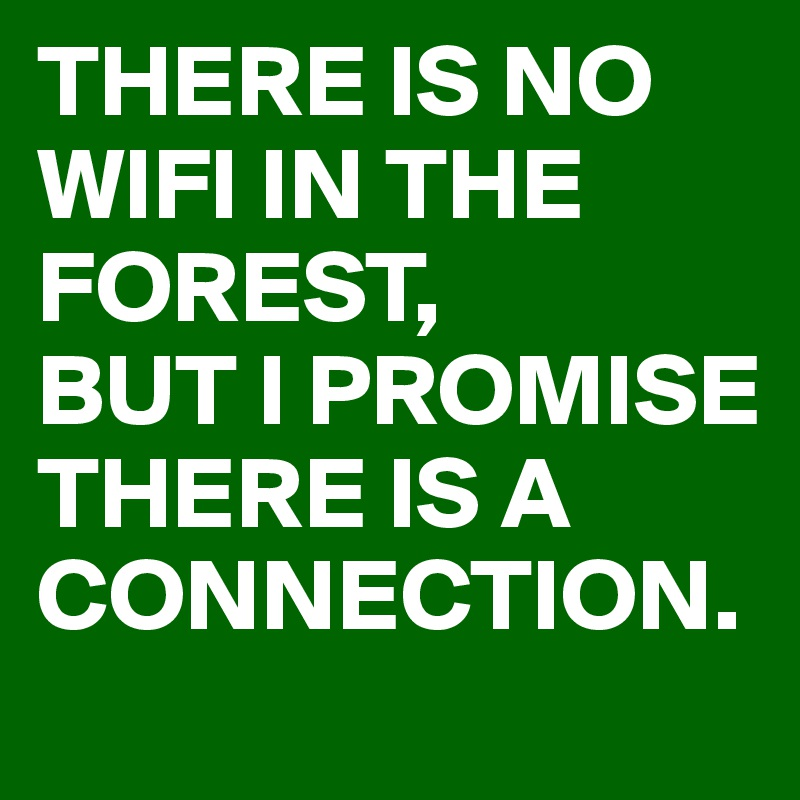 THERE IS NO WIFI IN THE FOREST, BUT I PROMISE  THERE IS A CONNECTION.