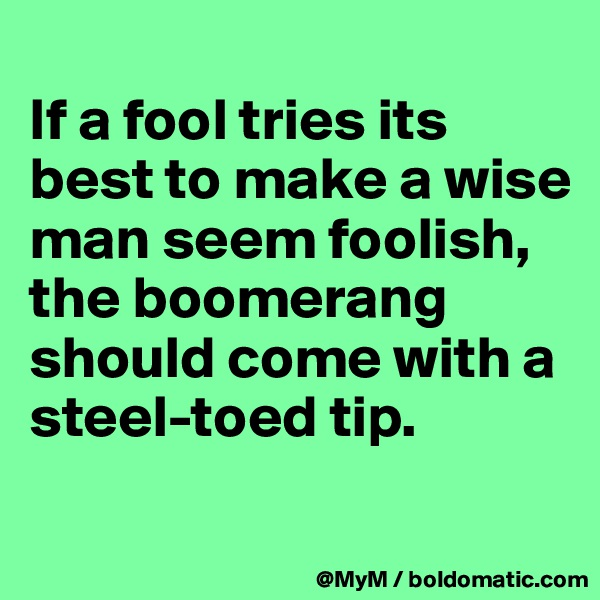 If a fool tries its best to make a wise man seem foolish, the boomerang should come with a steel-toed tip.