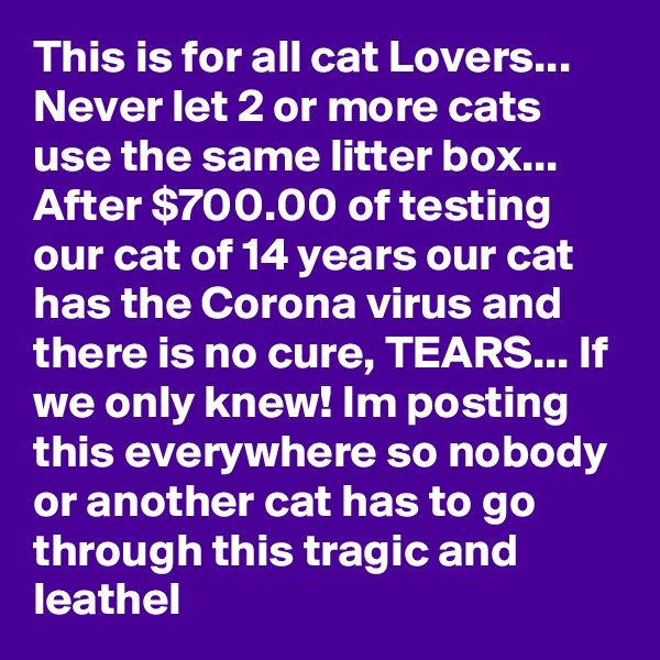 This is for all cat Lovers... Never let 2 or more cats use the same litter box... After $700.00 of testing our cat of 14 years our cat has the Corona virus and there is no cure, TEARS... If we only knew! Im posting this everywhere so nobody or another cat has to go through this tragic and leathel