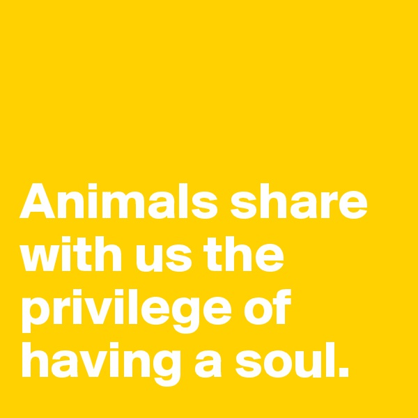 Animals share with us the privilege of having a soul.