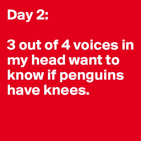 Day 2:  3 out of 4 voices in my head want to know if penguins have knees.