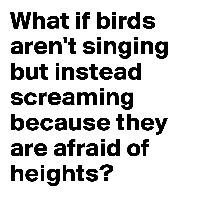 What if birds aren't singing but instead screaming because they are afraid of heights?