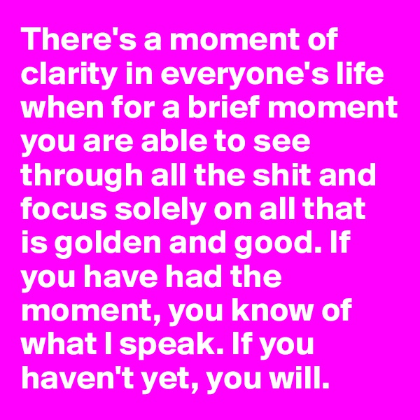 There's a moment of clarity in everyone's life when for a brief moment you are able to see through all the shit and focus solely on all that is golden and good. If you have had the moment, you know of what I speak. If you haven't yet, you will.