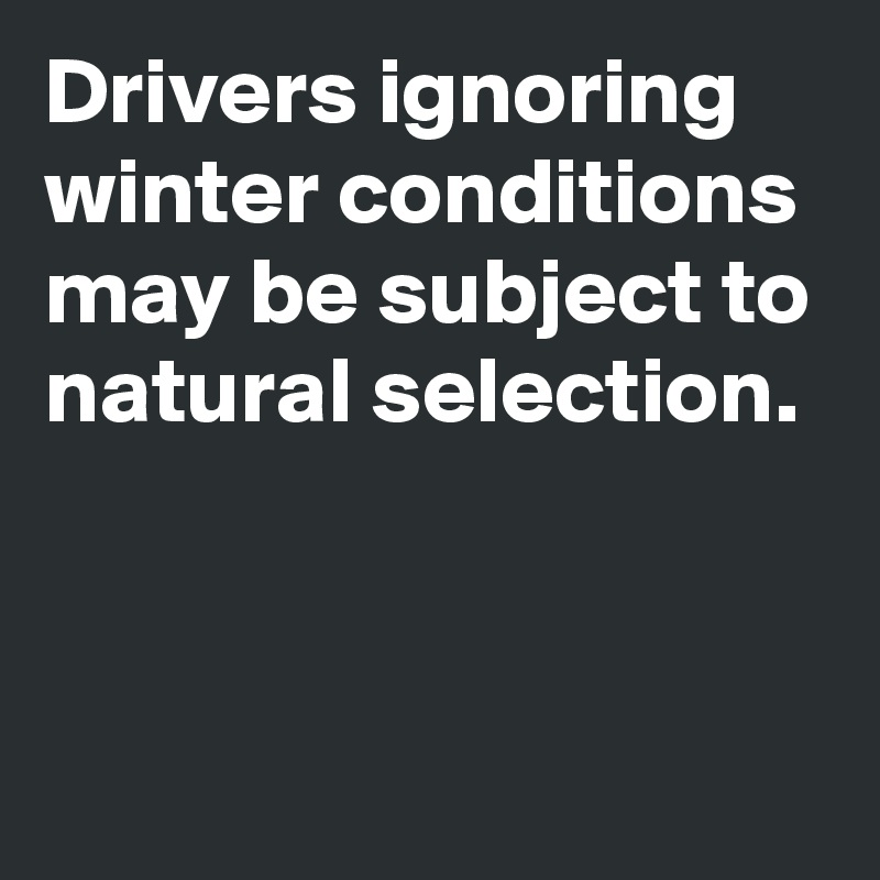 Drivers ignoring winter conditions may be subject to natural selection.