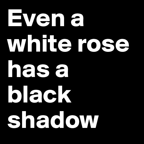 Even a white rose has a black shadow