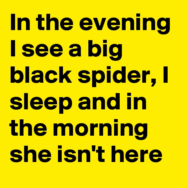 In the evening I see a big black spider, I sleep and in the morning she isn't here