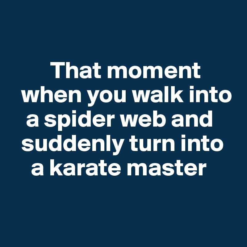 That moment    when you walk into        a spider web and      suddenly turn into     a karate master