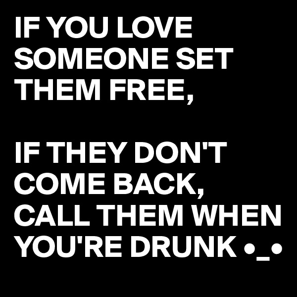 IF YOU LOVE SOMEONE SET THEM FREE,  IF THEY DON'T COME BACK,  CALL THEM WHEN YOU'RE DRUNK •_•