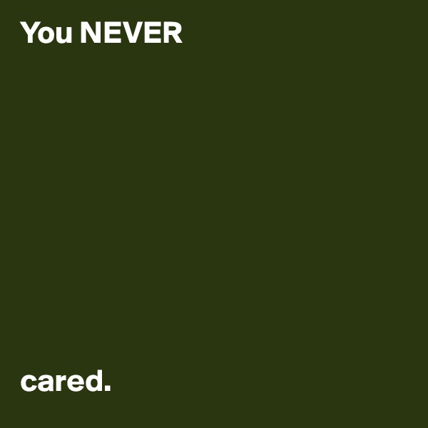 You NEVER           cared.