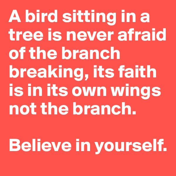 A bird sitting in a tree is never afraid of the branch breaking, its faith is in its own wings not the branch.   Believe in yourself.