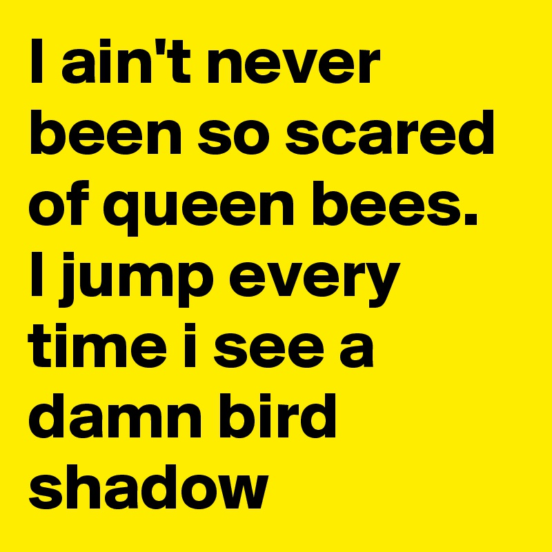 I ain't never been so scared of queen bees. I jump every time i see a damn bird shadow