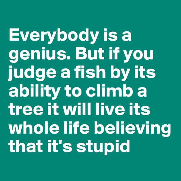 Everybody is a genius. But if you judge a fish by its ability to climb a tree it will live its whole life believing that it's stupid