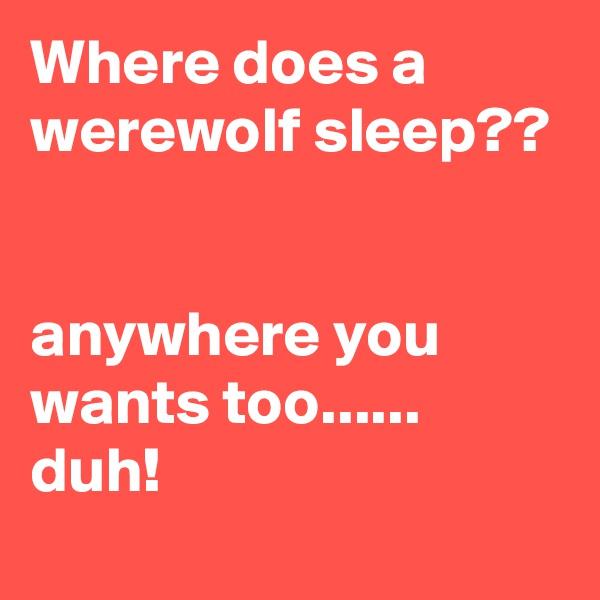 Where does a werewolf sleep??   anywhere you wants too...... duh!