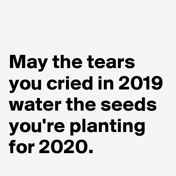 May the tears you cried in 2019 water the seeds you're planting for 2020.