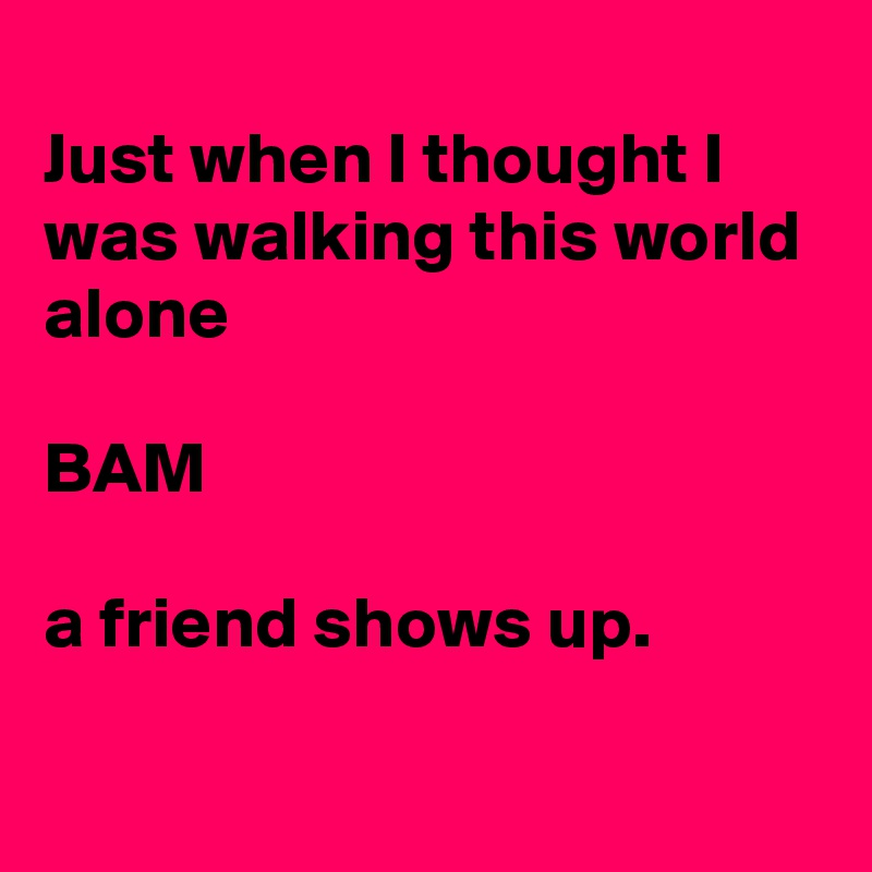 Just when I thought I was walking this world alone  BAM  a friend shows up.