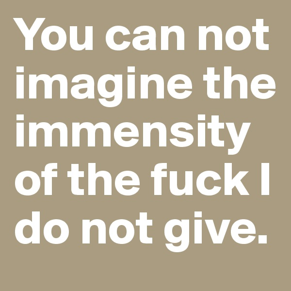 You can not imagine the immensity of the fuck I do not give.