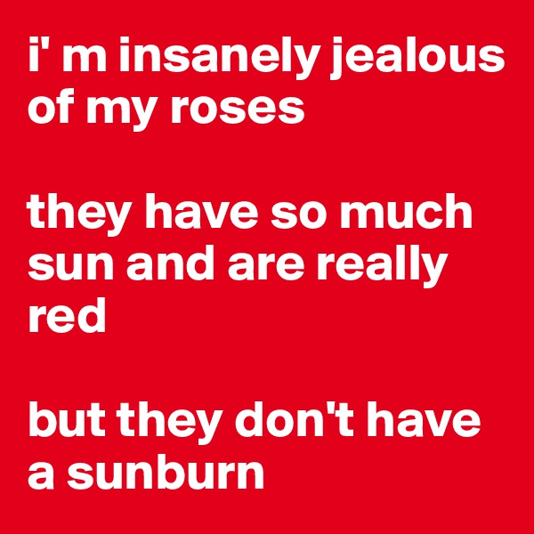 i' m insanely jealous of my roses  they have so much sun and are really red  but they don't have a sunburn