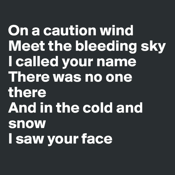 On a caution wind Meet the bleeding sky I called your name There was no one there And in the cold and snow I saw your face