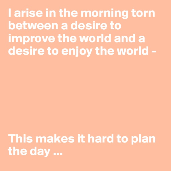I arise in the morning torn between a desire to improve the world and a desire to enjoy the world -        This makes it hard to plan the day ...