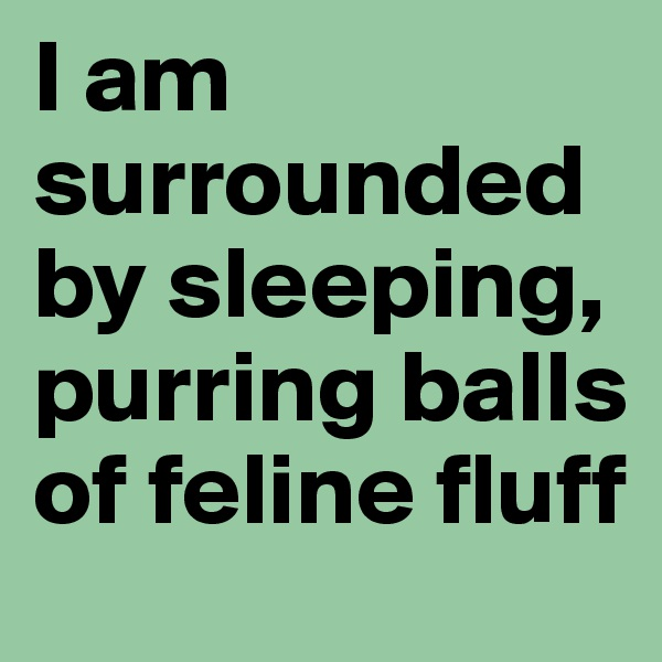 I am surrounded by sleeping, purring balls of feline fluff