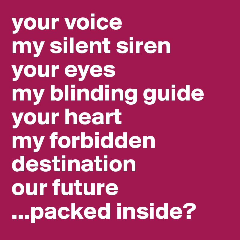 your voice my silent siren your eyes  my blinding guide your heart my forbidden destination our future ...packed inside?