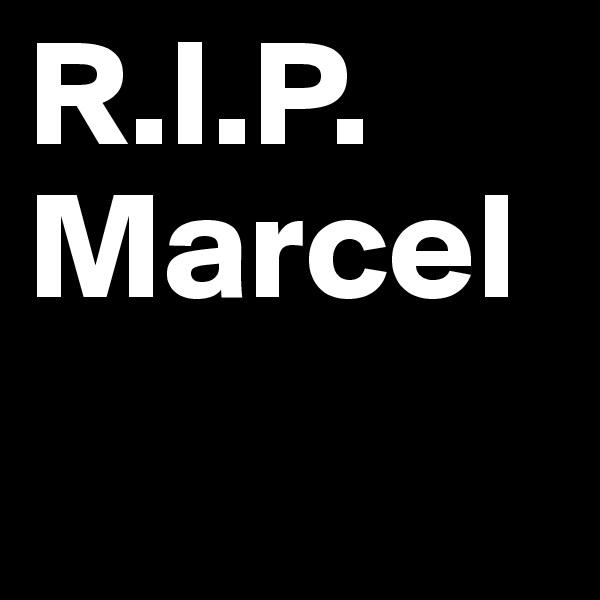 R.I.P. Marcel