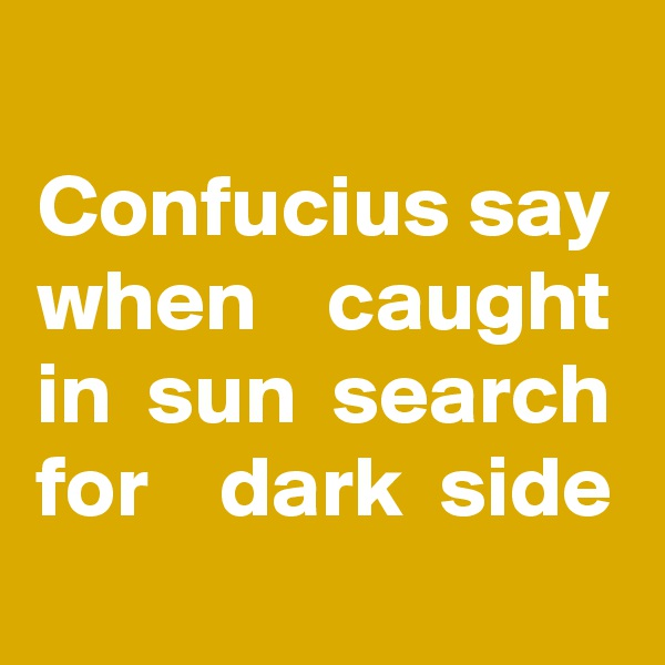Confucius say when    caught in  sun  search for    dark  side