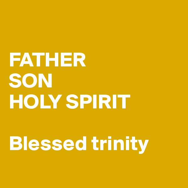 FATHER SON HOLY SPIRIT  Blessed trinity