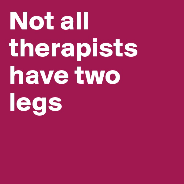 Not all therapists have two legs