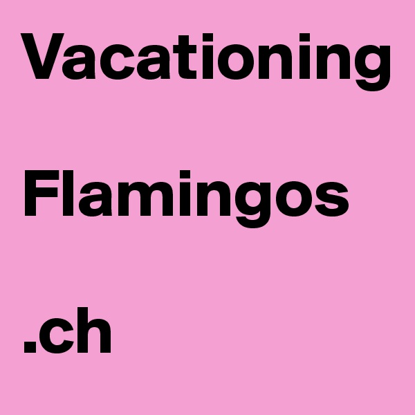 Vacationing   Flamingos  .ch
