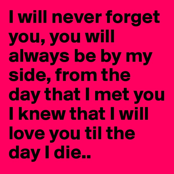 I will never forget you, you will always be by my side, from the day that I met you I knew that I will love you til the day I die..