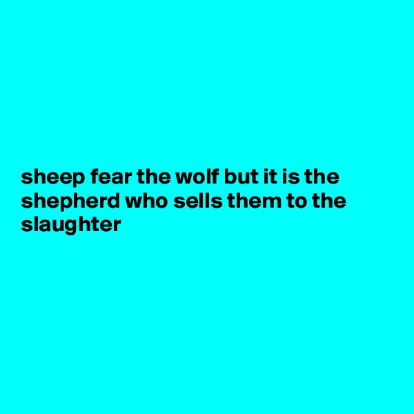 sheep fear the wolf but it is the shepherd who sells them to the slaughter