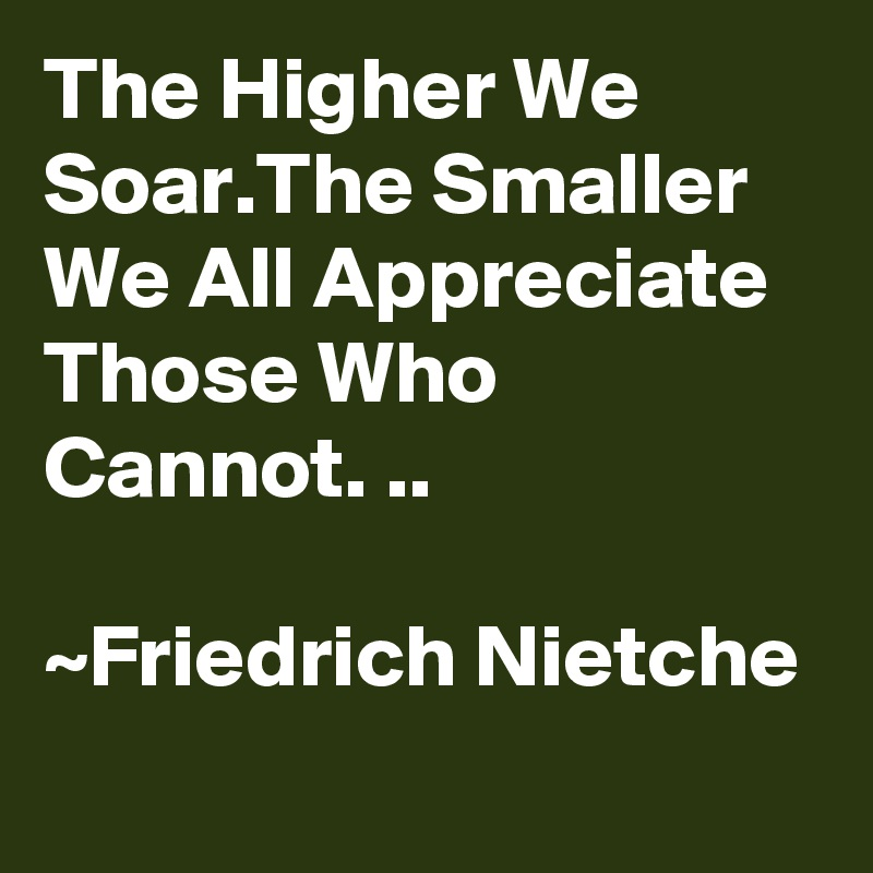 The Higher We Soar.The Smaller We All Appreciate Those Who Cannot. ..  ~Friedrich Nietche