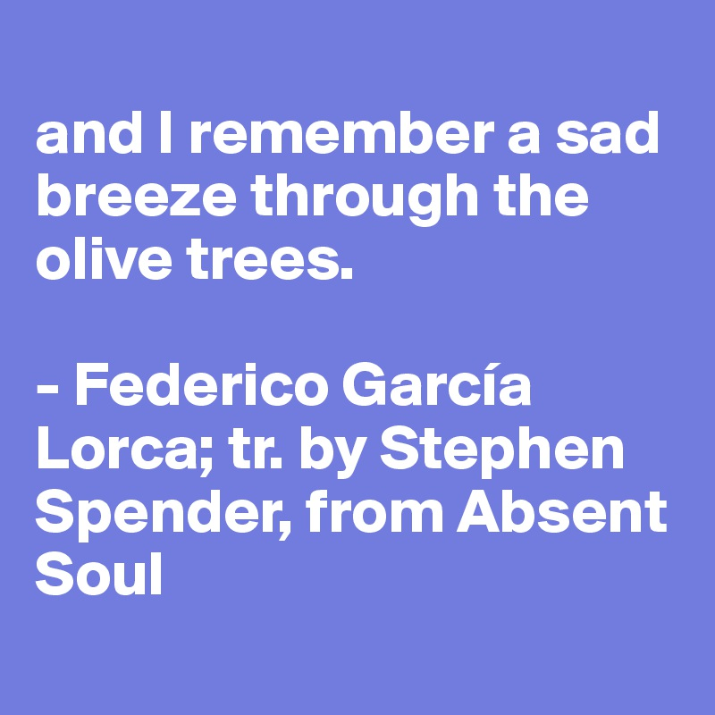 and I remember a sad breeze through the olive trees.  - Federico García Lorca; tr. by Stephen Spender, from Absent Soul