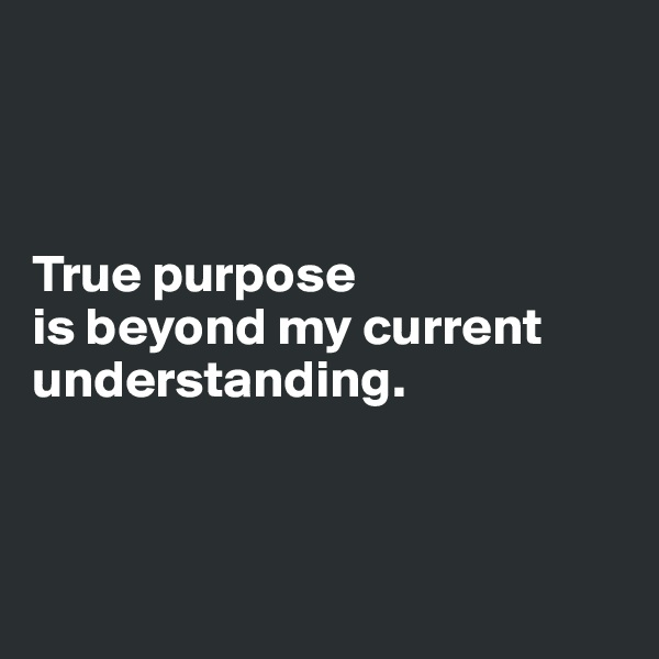 True purpose  is beyond my current understanding.