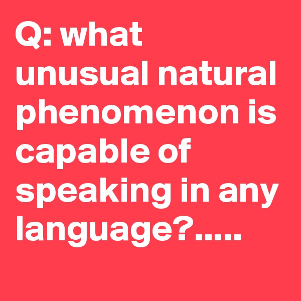 Q: what unusual natural phenomenon is capable of speaking in any language?.....