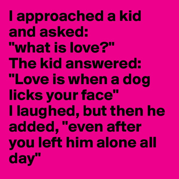 "I approached a kid and asked:  ""what is love?""  The kid answered: ""Love is when a dog licks your face""  I laughed, but then he added, ""even after you left him alone all day"""