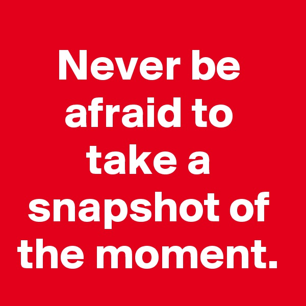 Never be afraid to take a snapshot of the moment.