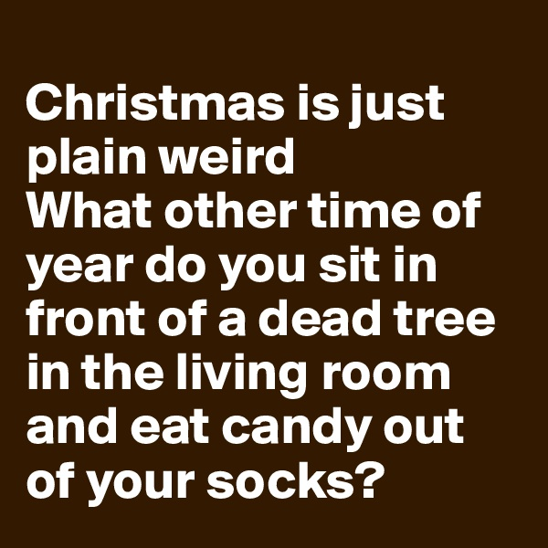 Christmas is just plain weird What other time of year do you sit in front of a dead tree in the living room and eat candy out of your socks?