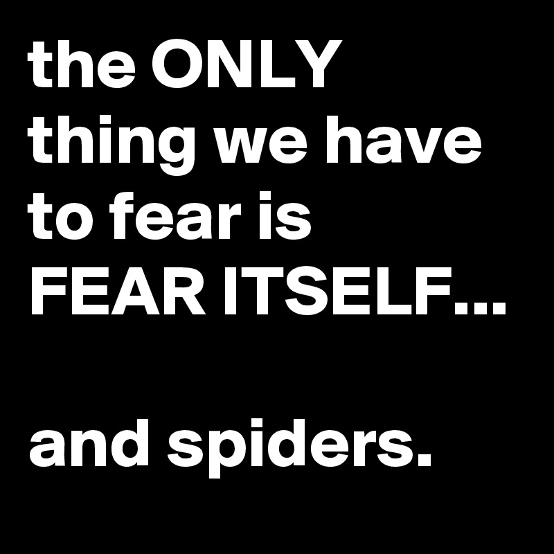 what we have to fear is fear itself