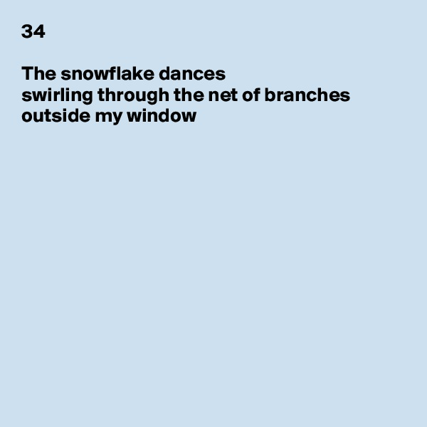 34  The snowflake dances swirling through the net of branches outside my window