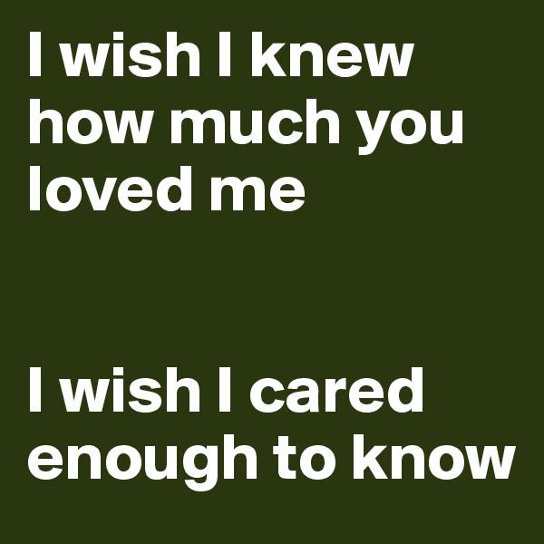 I wish I knew how much you loved me   I wish I cared enough to know