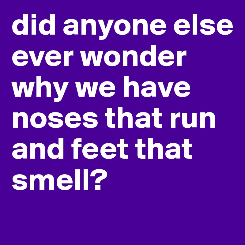 did anyone else ever wonder why we have noses that run and feet that smell?