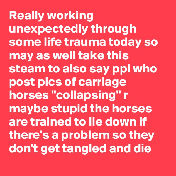 "Really working unexpectedly through some life trauma today so may as well take this steam to also say ppl who post pics of carriage horses ""collapsing"" r maybe stupid the horses are trained to lie down if there's a problem so they don't get tangled and die"
