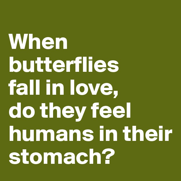 When butterflies fall in love, do they feel humans in their stomach?