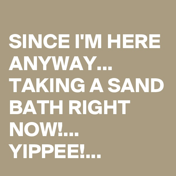 SINCE I'M HERE ANYWAY... TAKING A SAND BATH RIGHT NOW!... YIPPEE!...