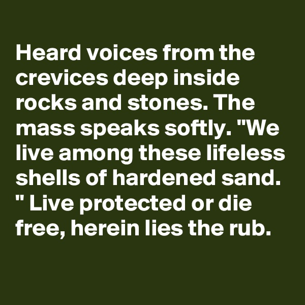 """Heard voices from the crevices deep inside rocks and stones. The mass speaks softly. """"We live among these lifeless shells of hardened sand. """" Live protected or die free, herein lies the rub."""