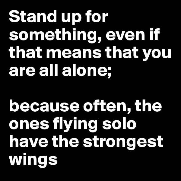 Stand up for something, even if that means that you are all alone;   because often, the ones flying solo have the strongest wings