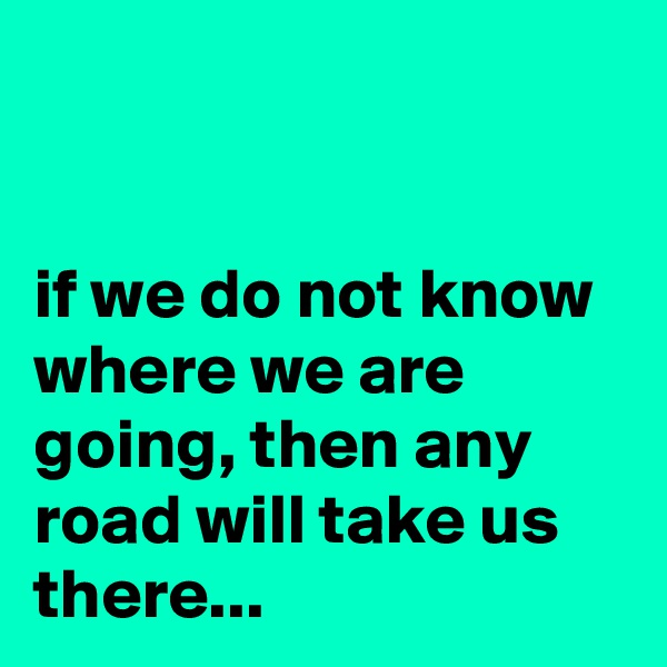 if we do not know where we are going, then any road will take us there...